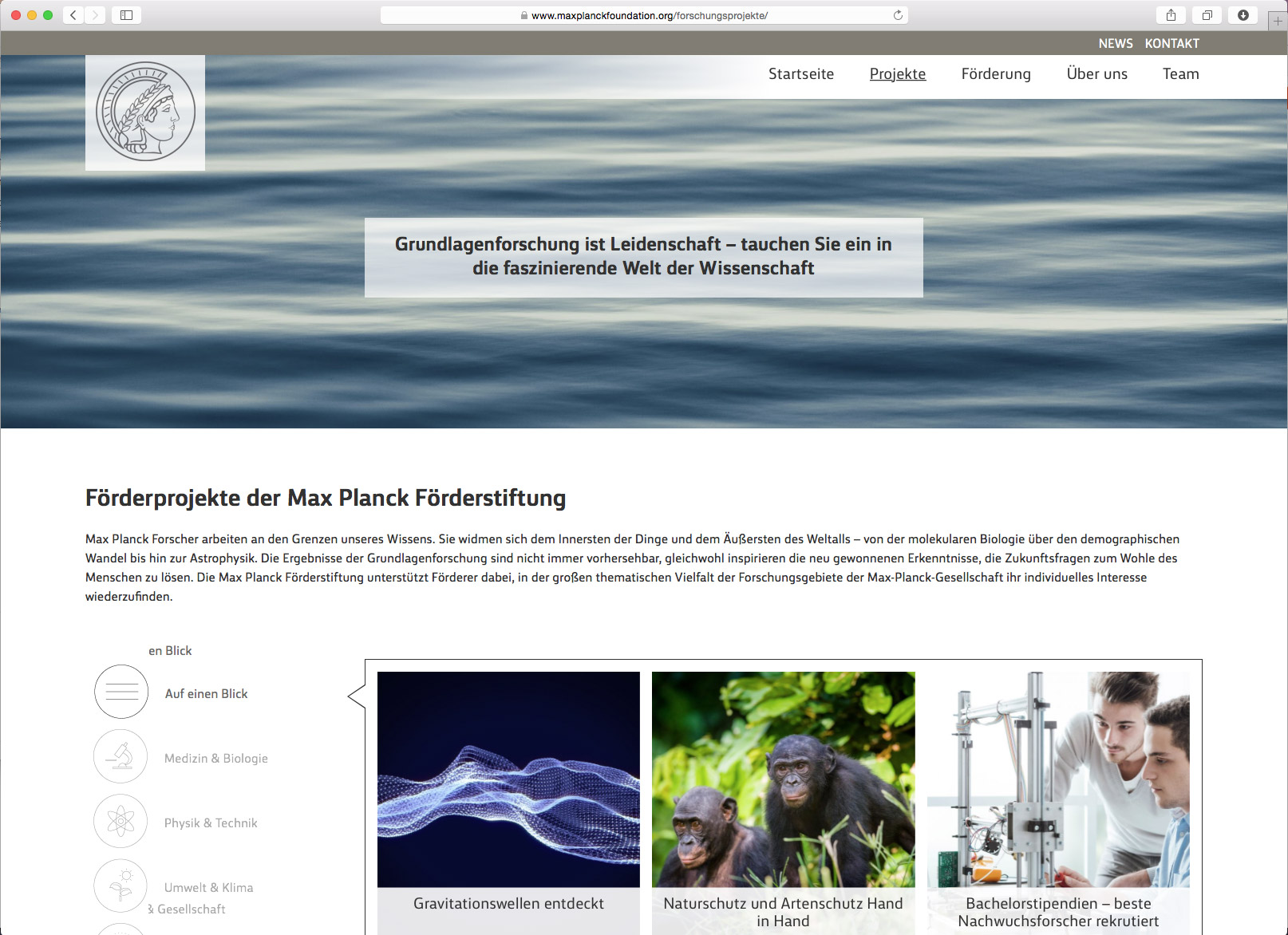 Max Planck Foundation